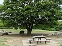 都立葛西臨海公園