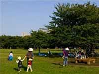 都立木場公園