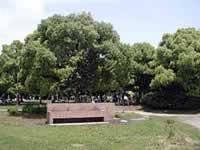 都立舎人公園